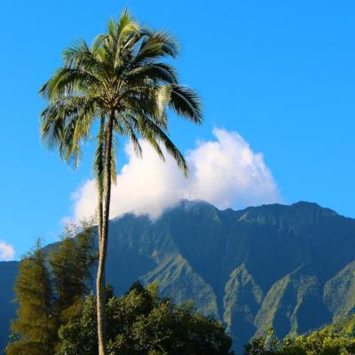 Fort Lauderdale to Kauai flights