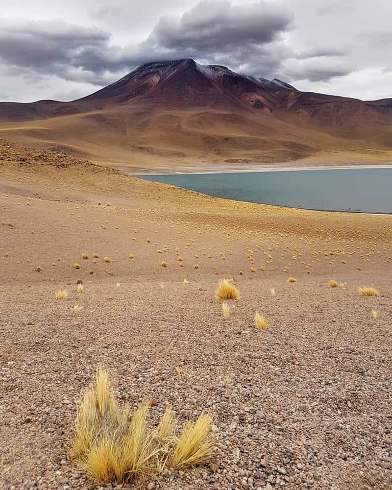 Le lac et le volcan Miñiques au nord du Chili