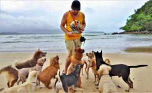 Faire 'fitter' 15 chiens dans un char en Thaïlande ou comment j'ai concilié mon âme d'aventurier et ma passion pour les canidés
