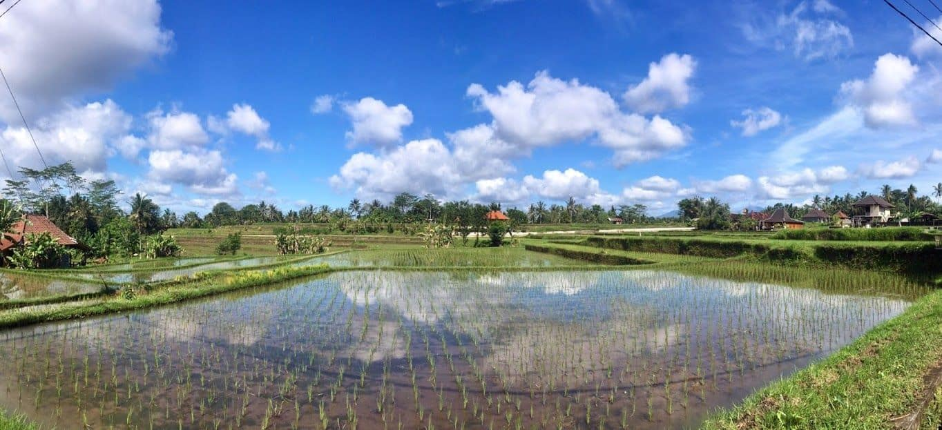 You are currently viewing Notre destination «bucket list»: Bali