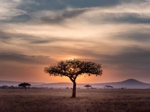 10 Reasons To Go To South Africa