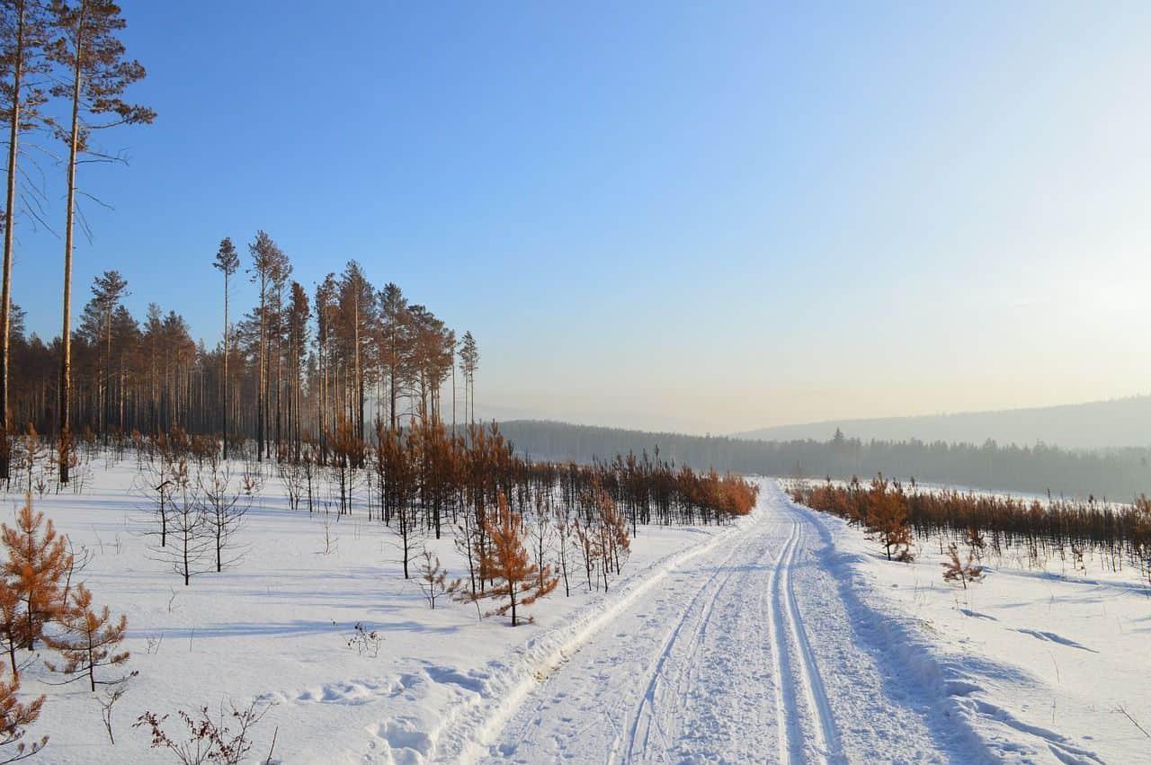 Des passagers pris pendant 3 jours en Sibérie