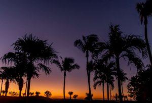 Deal pour la Floride à 67$CAD aller-retour en décembre (avec un petit roadtrip)