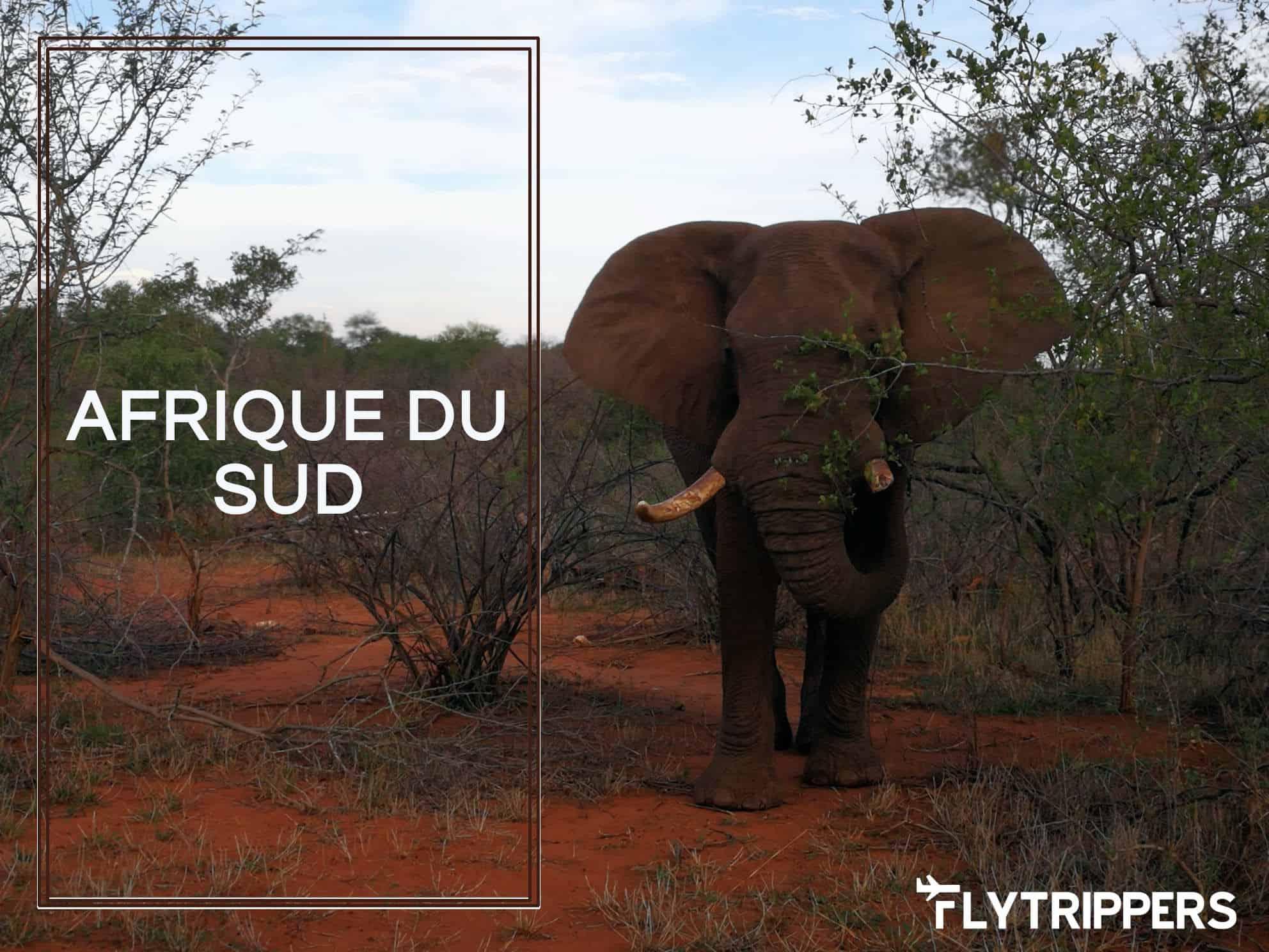 You are currently viewing Vidéo: Introduction à l'Afrique du Sud