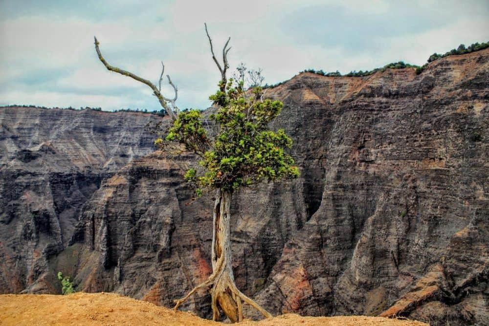 kauai best hikes