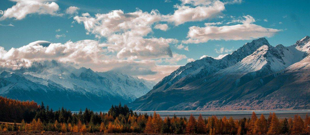 Top 8 Reasons to Visit New Zealand