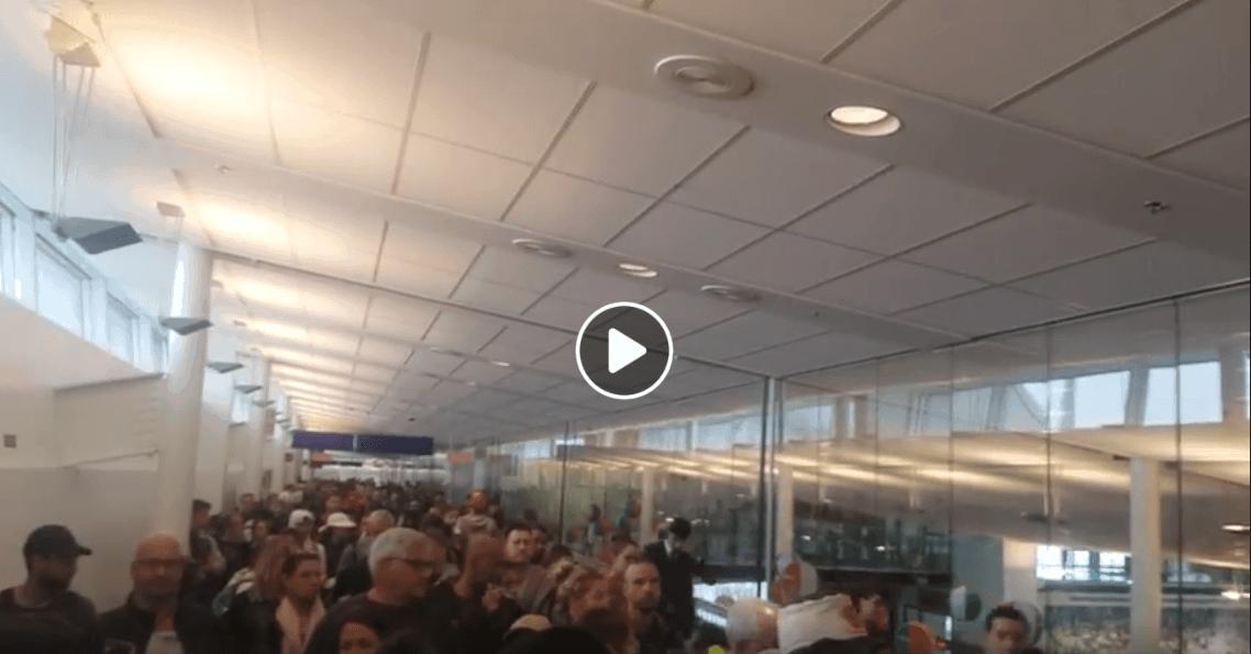 Vidéo: Attente interminable aux douanes à YUL