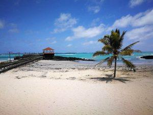 Îles Galapagos: itinéraire et budget