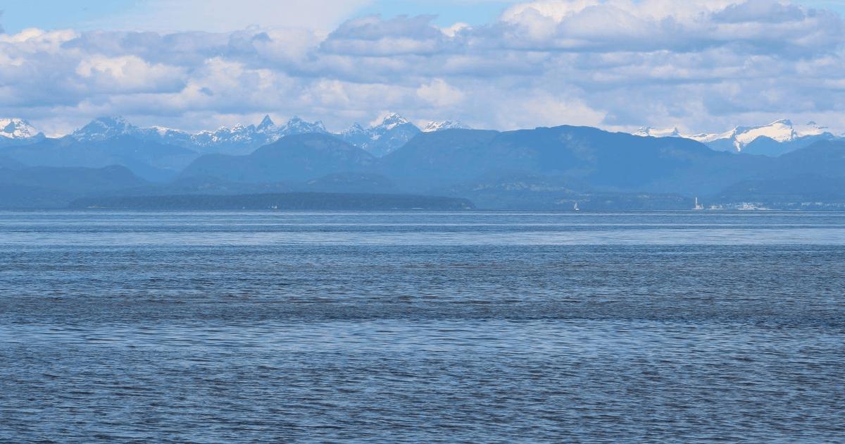 You are currently viewing Road trip vers l'Île de Vancouver (partie 2)