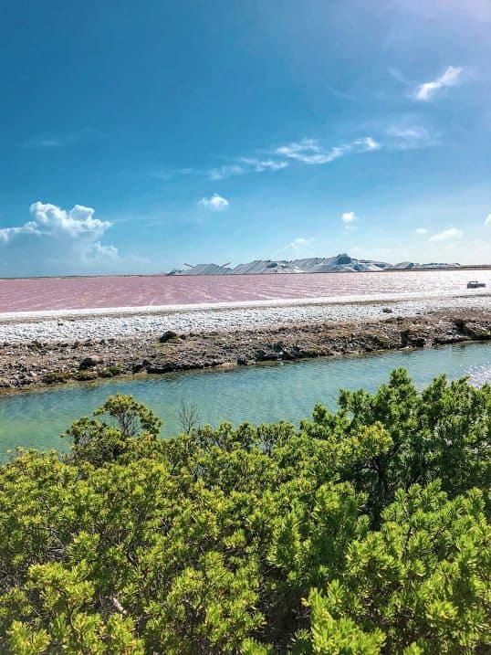 Lac rose et montagne blanche sur Bonaire