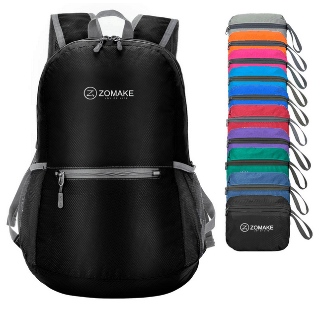 The Perfect Daypack That EVERY Traveler Should Have