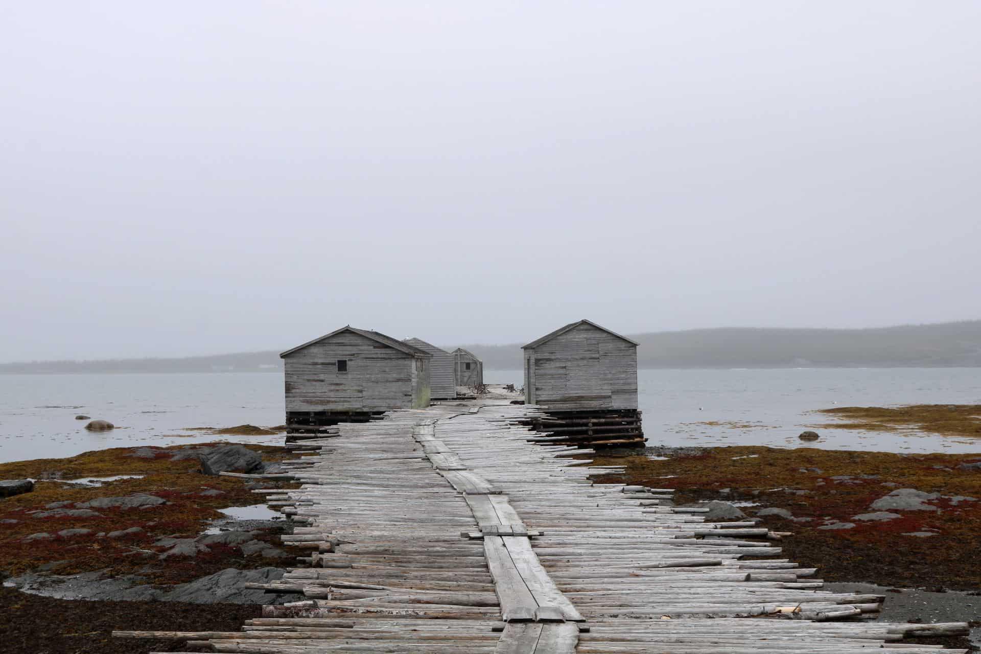 You are currently viewing 5 endroits à voir à Terre-Neuve, une île oubliée (et 5 astuces pour ton voyage)