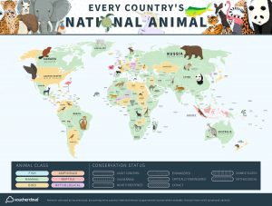 Every Country's National Animal On One Cool Map