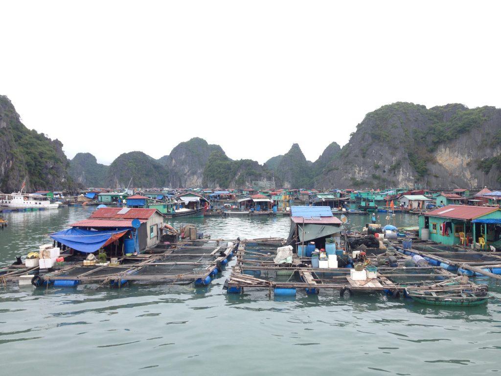 Habitations sur l'eau, Baie d'Halong