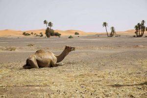 Coup de coeur au Maroc: 6 endroits à découvrir