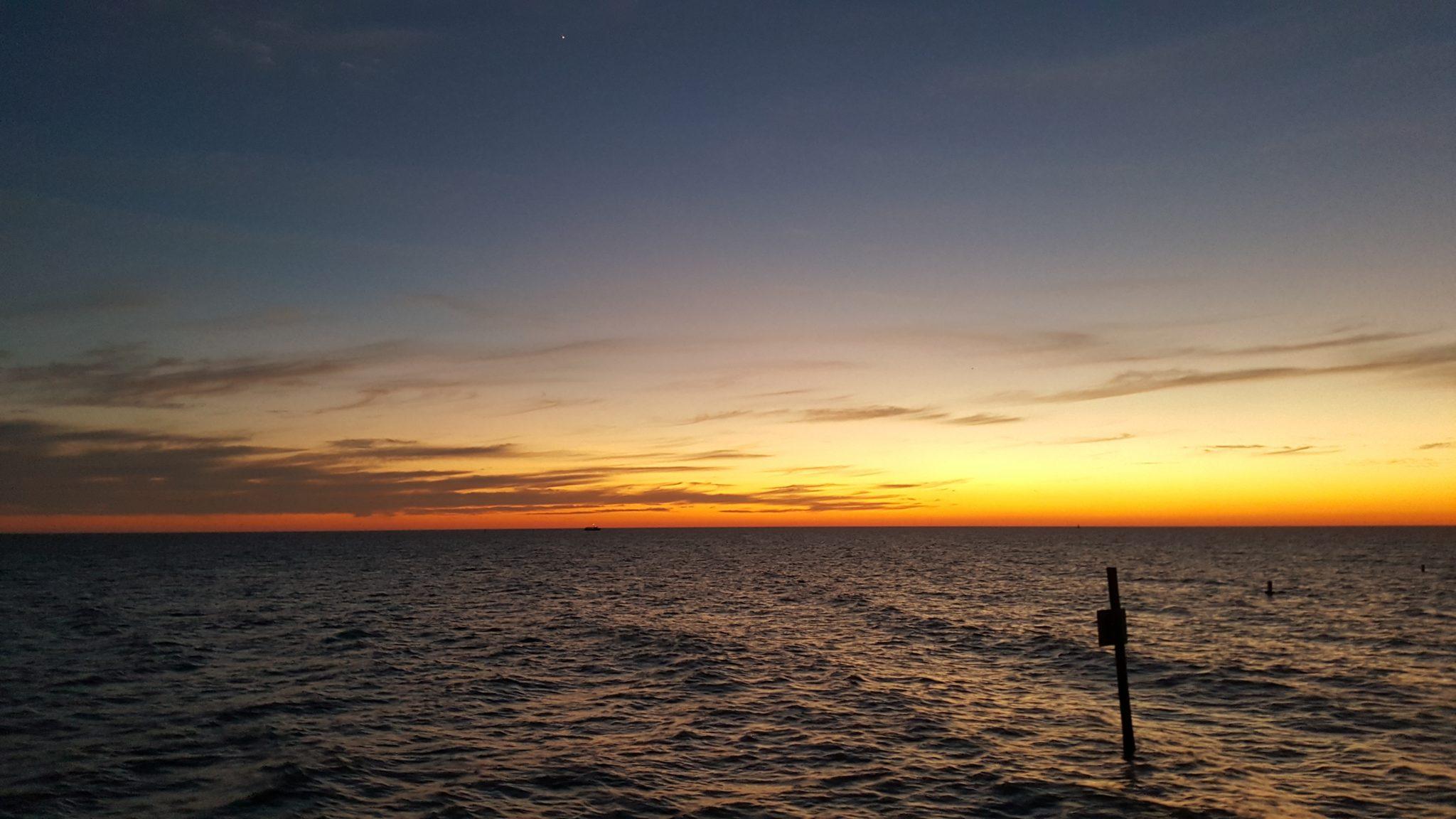 You are currently viewing Mes 3 expériences de voyage dans la région de Tampa Bay